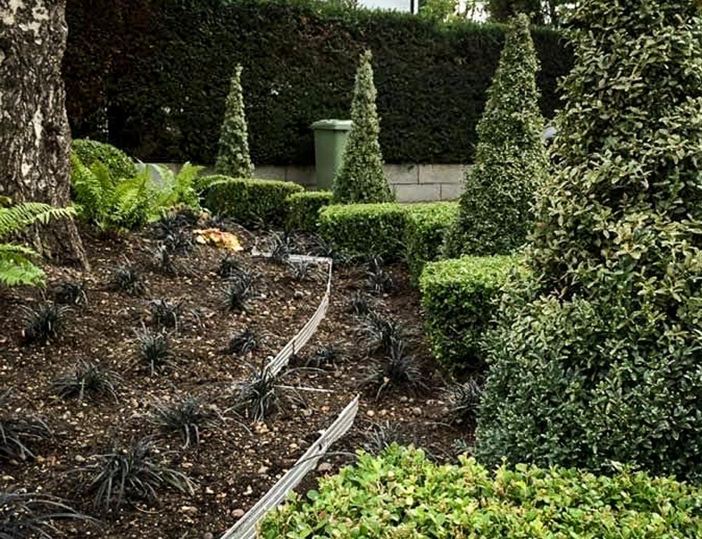 Danny-Clarke-Chislehurst-Garden-5
