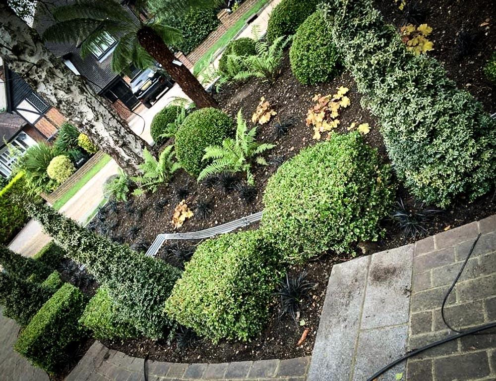 Danny-Clarke-Chislehurst-Garden-7
